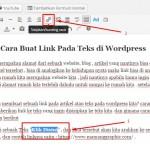 Cara Buat Link Pada Teks di WordPress
