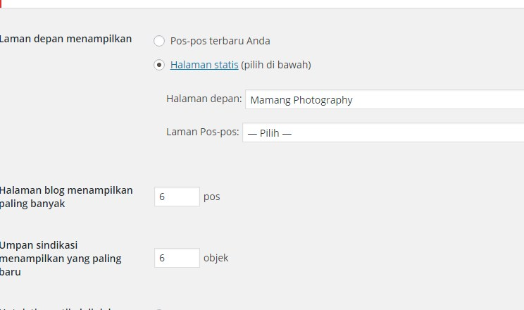 Reading Setting pada WordPress